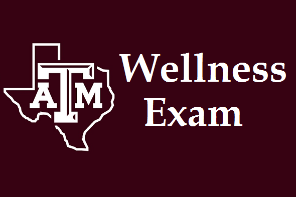 TAMU Wellness Exam